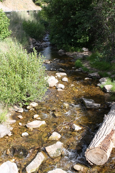 Daniels creek fishing utah rivers streams utah for Small creek fishing