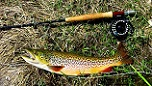Learn how to fly fish at free clinic