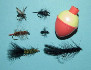 Coldwater flies