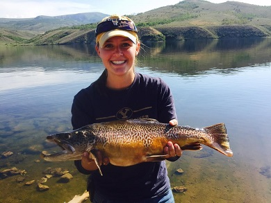 Want to catch a big fish? Here are 3 Utah lakes to check