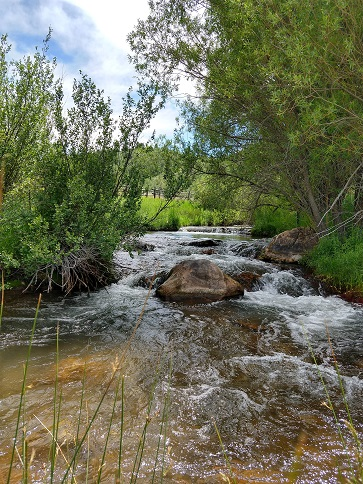 Four Utah rivers that offer great fishing in August