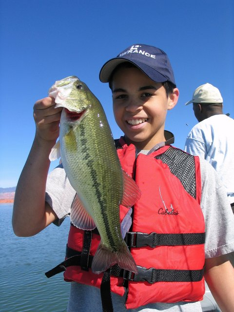 Memorial day weekend means great fishing utah fishing for Sand hollow fishing report