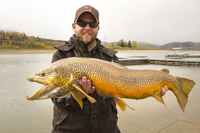 Big Tiger Trout from Scofield Reservoir