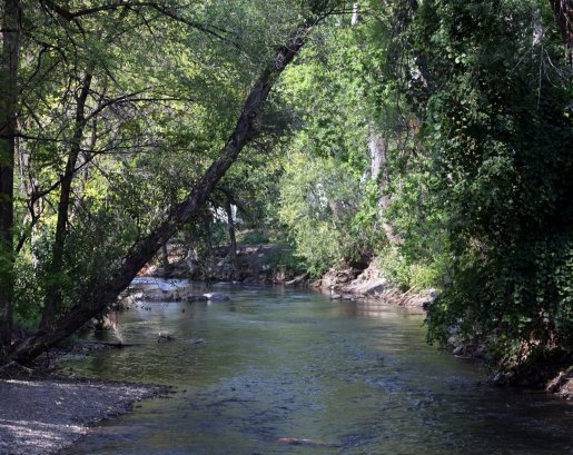 Seventeen acres of stream side habitat are now protected along the river section thanks to perpetual conservation easements.