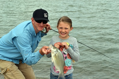 Wiper fishing should be excellent at Willard Bay Reservoir this year