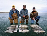 Lake Trout: Too Many Mouths to Feed