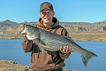 Learn How to Catch Fish at Lake Powell and Flaming Gorge