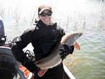 Anglers - Fish in Utah Lake Still Need Your Help