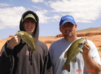 Smallmouth bass fishing utah fish species utah fishing for Lake powell fishing license