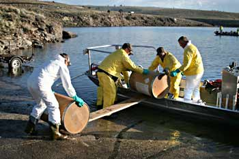 A DWR crew loads rotenone onto a boat at Panguitch Lake.